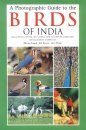 Photographic Guide to the Birds of India including Nepal, Sri Lanka, The Maldives, Pakistan, Bangladesh & Bhutan.
