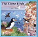 Sea Shore Birds