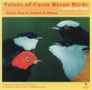 Voices of Costa Rican Birds: Caribbean Slope