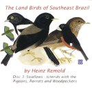 The Land Birds of Southeast Brazil (Volume 3)