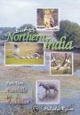 Birding Northern India - Part 2
