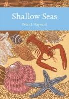 Shallow Seas