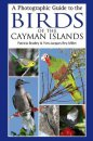 Photographic Guide to the Birds of the Cayman Islands