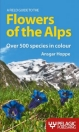 Flowers of the Alps