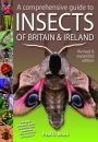 A comprehensive guide to the Insects of Britain & Ireland