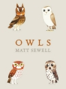 Owls: A Guide to the World's Favourite Bird
