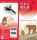 Common and Iconic Mammals of Japan