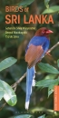 Pocket Photo Guide to the Birds of Sri Lanka
