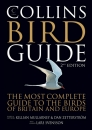 Collins Bird Guide 2nd edition (Large Format)