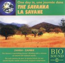 One day in the Savanna (Zambia)