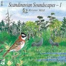 Scandinavian Soundscapes 1