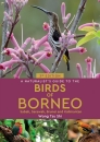 A Naturalist's Guide to the Birds of Borneo: Sabah, Sarawak, Brunei & Kalimantan