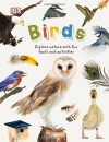 Birds (Nature Explorers)