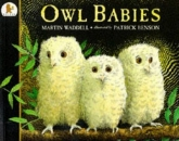 Owl Babies: Board Book and Gift Set