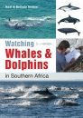 Watching Whales and Dolphins in Southern Africa
