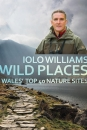 Wild Places: Wales' Top 40 Nature Sites