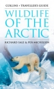 Wildlife of the Arctic