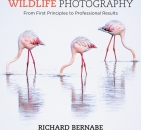 Wildlife Photography: From First Principles to Professional Results