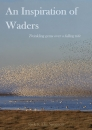 An Inspiration of Waders: Twinkling Gems Over a Falling Tide