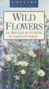 Wild Flowers of Britain and Europe (Collins Nature Guides)