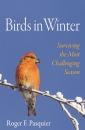 Birds in Winter: Surviving the Most Challenging Season