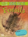 100 Facts Fossils Pocket Edition
