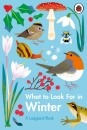 What to Look For in Winter (A Ladybird Book)