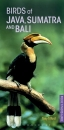 Pocket Photo Guide to the Birds of Java, Sumatra and Bali