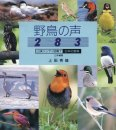 Wild Bird Songs of Japan