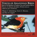 Vol 3: Ground antbirds -jays