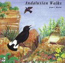 Andalusian Walks