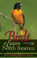 Birds of Eastern North America - A Photographic Guide