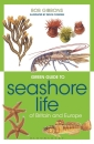 Green Guide Seashore Life of Britain and Europe