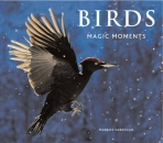 Birds: Magic Moments