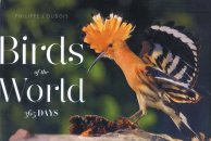 Birds of the World (365 days)