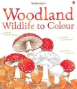 Woodland Wildlife to Colour (Usborne)