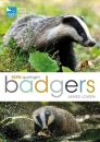Badgers (RSPB Spotlight)