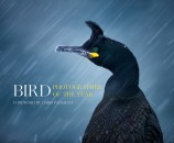 Bird Photographer of the Year Collection 1