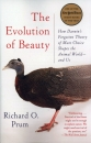 The Evolution of Beauty: How Darwin's Forgotten Theory of Mate Choice Shapes the Animal World - and Us