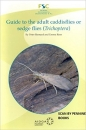 Guide to the Adult Caddisflies or Sedge Flies (Trichoptera)