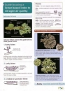 Guide to Using a Lichen Based Index to Nitrogen Air Quality