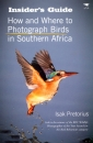 How and Where to Photograph Birds in Southern Africa