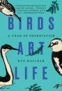 Birds Art Life: A Year of Observation