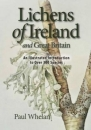 Lichens of Ireland and Great Britain