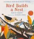 Bird Builds a Nest: A Science Storybook about Forces