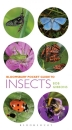 Bloomsbury Pocket Guide to Insects