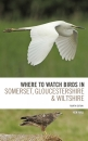 Where To Watch Birds in Somerset, Gloucestershire and Wiltshire: Edition 4