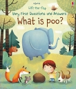 What is Poo? (Very First Lift-the-Flap Questions and Answers)