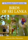 A Naturalist's Guide to the Birds of Sri Lanka: Edition 2