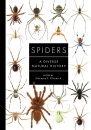 Spiders: A Diverse Natural History